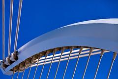 Lines and curves (Steve-h) Tags: bridge blue ireland santiago dublin white lines architecture grey calatrava cuves steveh superaplus aplusphoto canoneos5dmarkii bestcapturesaoi tripleniceshot mygearandmepremium mygearandmebronze canonef70200mmf28lisiiusm
