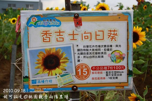桃園觀音向陽農場20100918-091