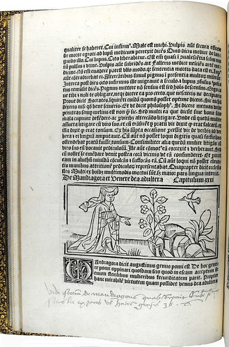 Page of text with woodcut illustration and initial from 'Dialogus creaturarum moralisatus'. Sp Coll S. M. 1986.