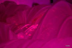 volteggiano mille pensieri nella mia testa, e mille battiti nel mio cuore (*estella*) Tags: tetto rosa astratto fucsia pensieri lenzuola succodifico