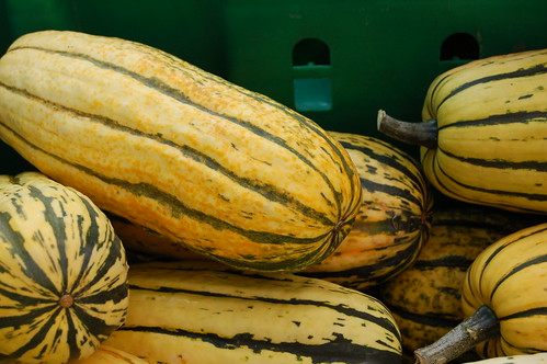 Delicata squash, my favorite by Eve Fox, Garden of Eating blog, copyright 2010