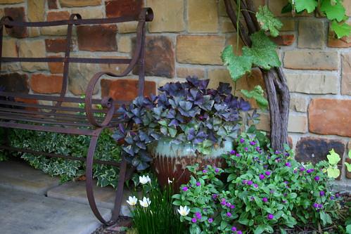 charming plantings