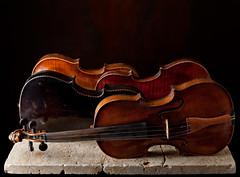 Violin Quartet (kevsyd) Tags: stilllife violins kevinbest
