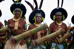 _MG_8539 (ingetje tadros) Tags: travel portrait possum hat animal spectacular beads outfit different performance feathers culture style bodypaint dressedup jewellery adventure entertainment weapon beat bones remote drumming colourful tradition facepaint papuanewguinea bodyart extravaganza exciting indigenous spear goroka travelphotography faceart gorokashow tribalfamily ingetjetadros