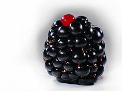 BlackBerry (PhotoGrapherQ80 «KWS») Tags: closeup adel abdeen