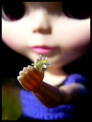 Libi and a tiny flower