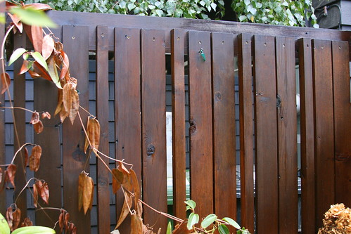 copper gate bad side fence
