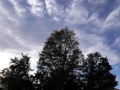 see you tomorrow (dmixo6) Tags: autumn canada night evening normal muskoka 2010 bipolar dugg dmixo6