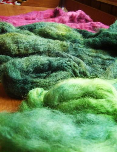 Topsband wool tops