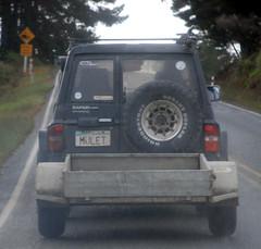 Mulet (testpatern) Tags: new west car forest island coast mullet vanity north plate 4wd safari zealand license vehicle te custom northland aotearoa licence waipoua mulet ikaamaui