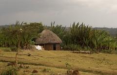 hut ethiopia