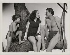 7000-3767 (AliceJapan ʕ •ᴥ•ʔ) Tags: johnny maureen mgm 1939 osullivan weissmuller johnnyweissmuller maureenosullivan tarzanfindsason