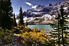 Autumn at Bow Lake - Canada (Jackpicks) Tags: autumn canada foliage alberta icefieldsparkway bowlake rockpaper platinumphoto