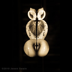 Naked Owl (s0ulsurfing) Tags: lighting light test sunlight abstract black macro reflection art nature beautiful beauty closeup canon reflections naked square perception wings october erotic heart natural bare creative shell rude rorschach polish monotone monochromatic personality symmetry reflected lumiere 7d owl ape seashell imagination symmetrical swirls elegant stripped squared suggestive perv 2010 cognition interpretation onblack macrography splittone psychological boxinggloves ladyparts s0ulsurfing maleparts canon7d jasonswain ambiguousdesigns