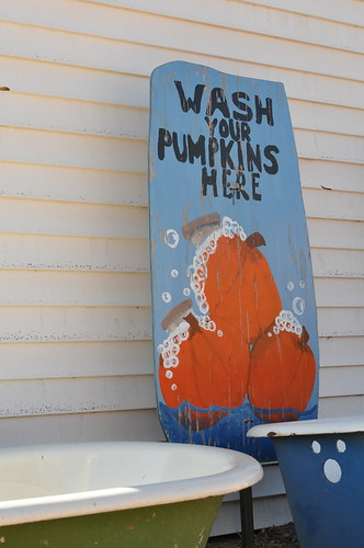 Wash Your Pumpkins Here