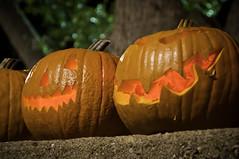Smile! (MissMae) Tags: mountains pumpkins jackolanterns pilgrimpines