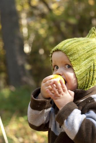 enjoying a wild pear 2