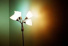 I love lamp (Brooks Swinnerton) Tags: lamp delete10 delete9 delete5 delete2 delete6 delete7 delete8 delete3 delete delete4 save save2 nikonn60 70mm lomofilm deletedbydeletemeuncensored