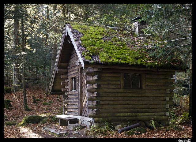 la cabane au fond du bois... 5095962105_7d90f1a607_z