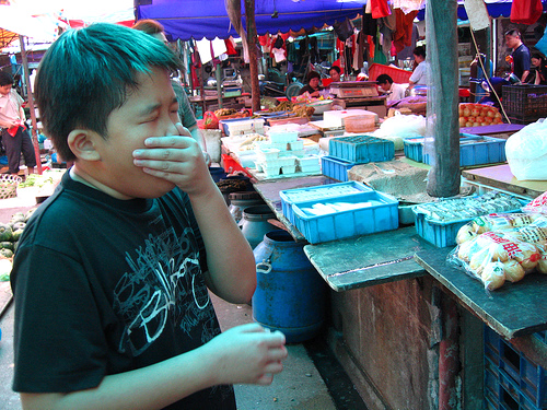 stinky tofu wey-1