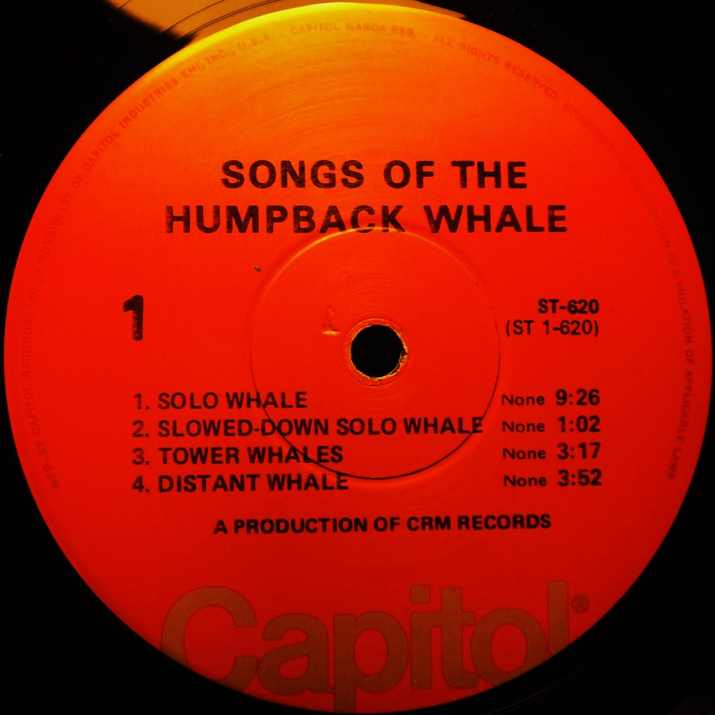 SONGS OF THE HUMPBACK WHALE label