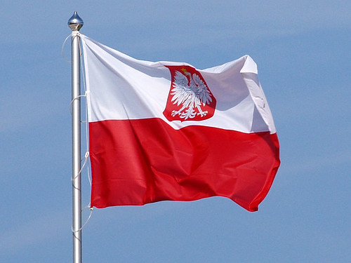 Polska flaga z białym orzełkiem