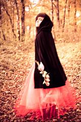 blurry memories (the*Glint - new portfolio online http://www.thegli) Tags: portrait woman blur flower fleur colors girl automne blurry woods couleurs story histoire hood fade foret flou glint chaperon autumne delave theglint