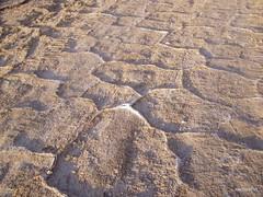 Dead Sea. Road surface