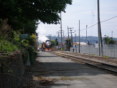 Excusion train in Everett, Washington (rrchapman) Tags: washington wa unionpacific everett southernpacific sp4449 up844