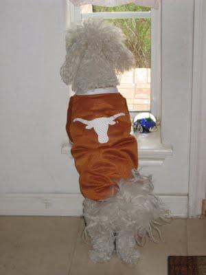 dogwlonghornshirt