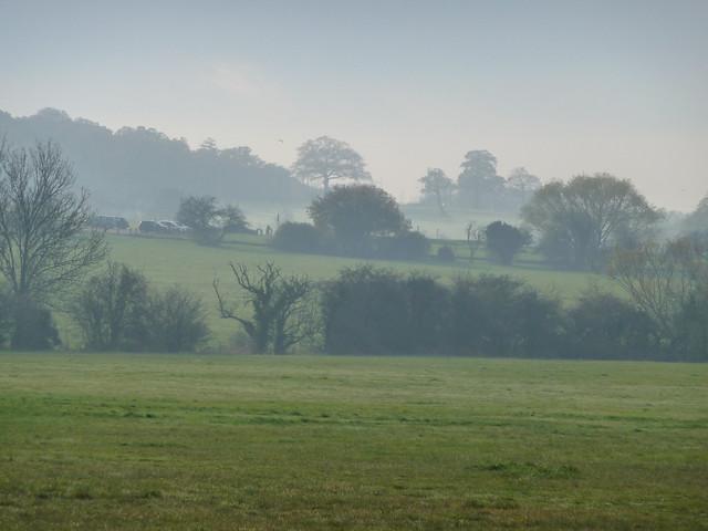 Mist Layers