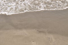 In the Sand (Refocus Photography) Tags: ocean beach wet water outside outdoors sand sandy tan wave foam myrtlebeach2010