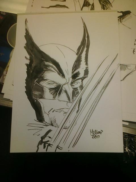 Wolverine sketch 1