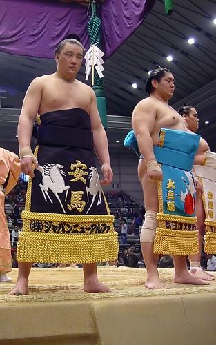 日馬富士 画像37