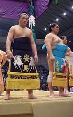 日馬富士 画像39