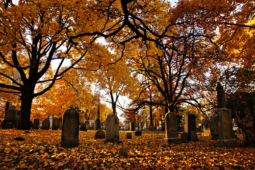 Autumn in Mount Pleasant Cemetery.