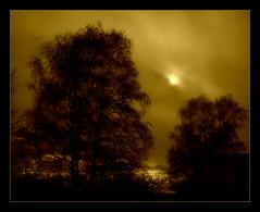 941 Light (Nebojsa Mladjenovic) Tags: light sky sun sunlight mist france tree art nature monochrome sepia clouds digital dark french outdoors lumix frankreich burgundy panasonic ciel frankrijk bourgogne arbre priroda morvan fz50 drvo yonne svetlost oblaci mladjenovic mygearandmepremium mygearandmebronze mygearandmesilver mygearandmegold mygearandmeplatinum mygearandmediamond mygearandmeplatinium