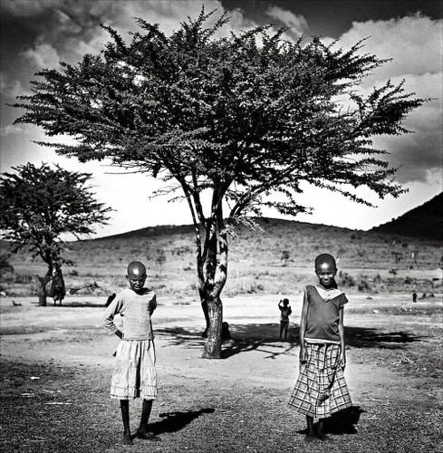 festimage 2010 masai