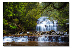 Liffey Falls (II), Tasmania, Tasmania, (Matthew Stewart | Photographer) Tags: trees tree water river waterfall moss rocks long exposure branch australia falls liffey tasmania ferns 2010 waterwall photos1 photoset1