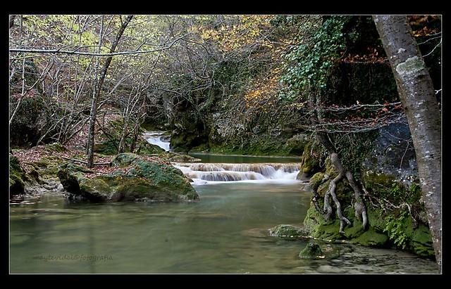 un rincon en el rio