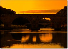 vanishing beauty - the City is show (Ev@ ;-)) Tags: italy rome roma river bologna exibition motorshow enel agneseevamontecchi conquestasono400lemiefotoinexploregrazieatutti