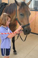 Getting Dallas ready (Montgomery Area Nontraditional Equestrians (MANE)) Tags: al mane pikeroad