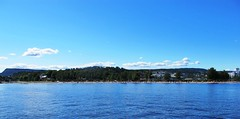 Summer boating on the Oslo Fjord #19