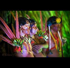 yanomami alert, Brazil (© Tatiana Cardeal) Tags: brazil brasil native tribal 2008 bertioga indígena indigenouspeople índio yanomami povosindígenas indigenousnationalfestival festanacionaldoíndio