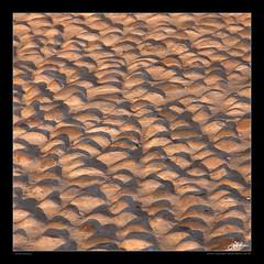 softly stoning (guido ranieri da re: work wins, always off) Tags: italy nikon italia stones pietre indianajones treviso coldlight veneto lucecalda nonsonoglianniamoresonoichilometri guidoranieridare goldlightthanksreintje