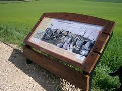 flod6 (ospreyco) Tags: signs heritage battlefield footpath localhistory heritagetrail battlesite interpretationpanel heritageinterpretation interpretivepanel theospreycompany ospreysigns naturesigns