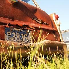First State Marathon (gregbosque) Tags: graveyard grass car virginia weeds rust automobile antique 66 licenseplate bumper chrome ornaments tailgate trunk junkyard oldcar taillight checkermarathon firststate panny20mm17 olypenepl1