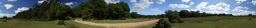 2010-08-30 New Forest panorama