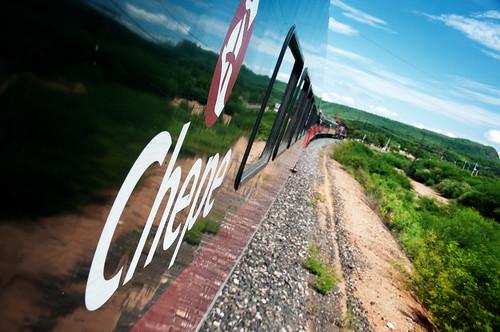 El Chepe 06