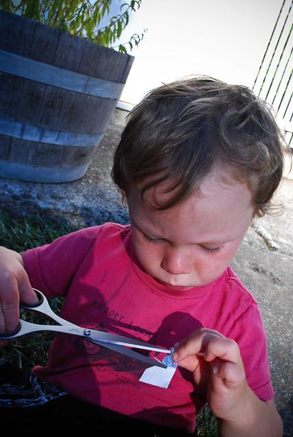 summer scrapbook :: summer making...